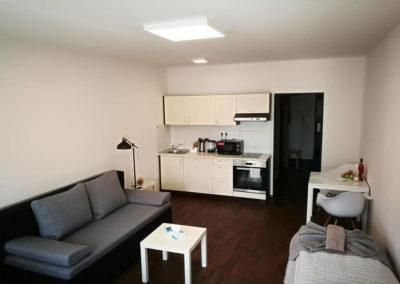 Kuchyně v apartmánu Bratislavská