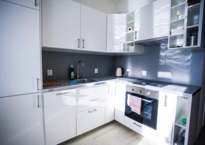 Kuchyně apartmánu Haasova 1NP