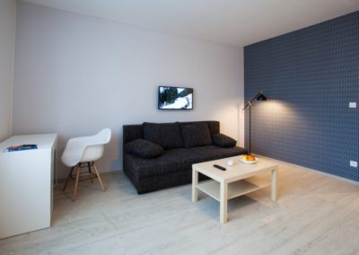 Rozkládací pohovka v apartmánu Haasova 2np