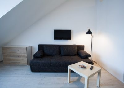Rozkládací gauč v apartmánu Haasova 3NP